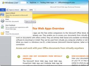 MicrosoftWordWebApp