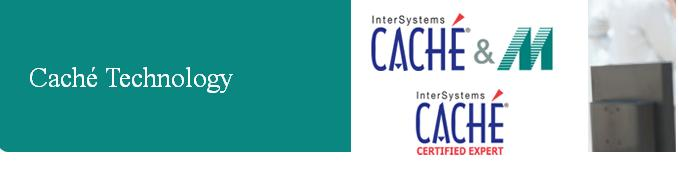 Intersystems Cache Jobs