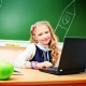 Blended Learning- The Future Of Education System