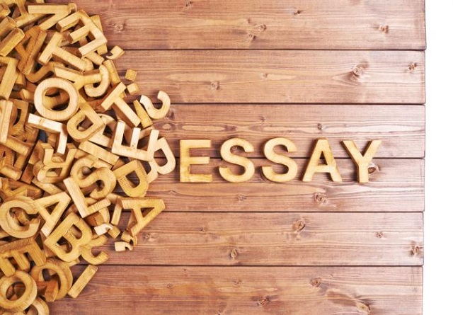 Reasons For Purchasing Essay from UK Company Greatpaper