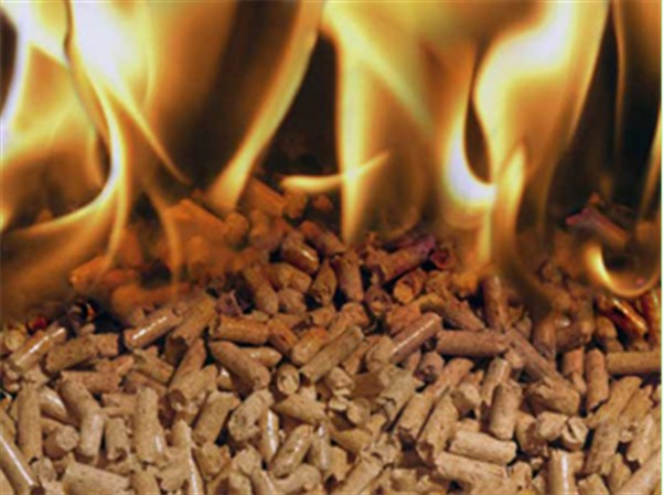 Some Essential Tips To Keep In Mind On How To Maintain Biomass Pellet Mills