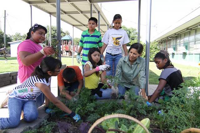 Green Fingers For Improved Learning Capabilities