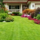 Experience The Splendor Of Landscaping With Ultimate Services Professional Grounds Management