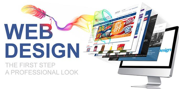 How To Choose A Website Design Company In Jaipur?